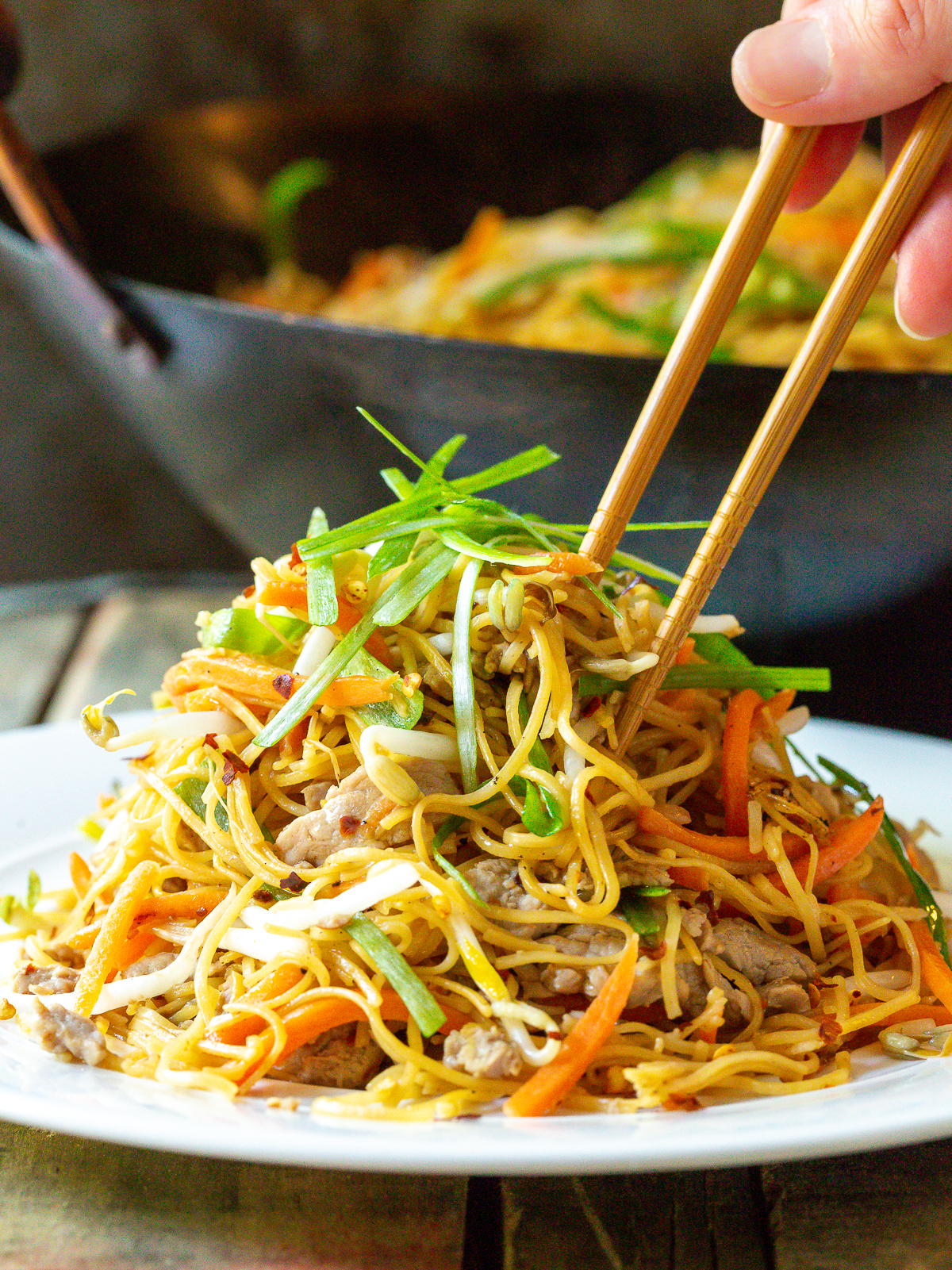 Easy Cantonese Pan Fried Noodles (Pork Lo Mein)