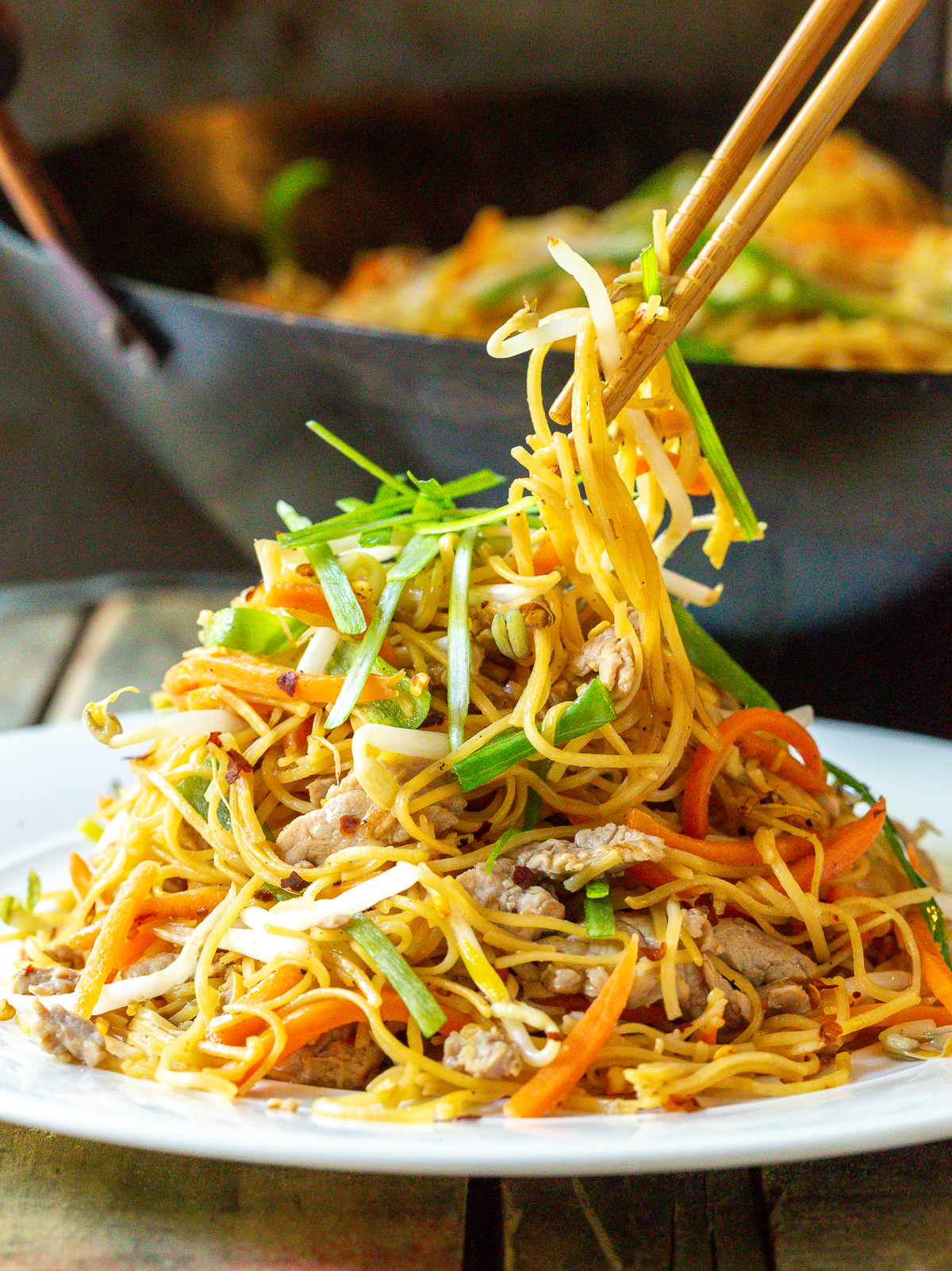Chinese Pan Fried Noodles (Pork Lo Mein)