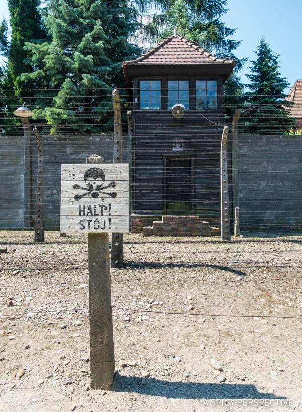 Auschwitz - Top 10 Reasons to Visit Krakow, Poland | ASpicyPerspective.com #travel