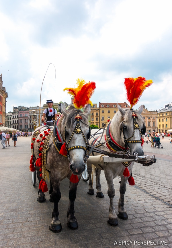 Horse Ride - Top 10 Reasons to Visit Krakow, Poland | ASpicyPerspective.com #travel