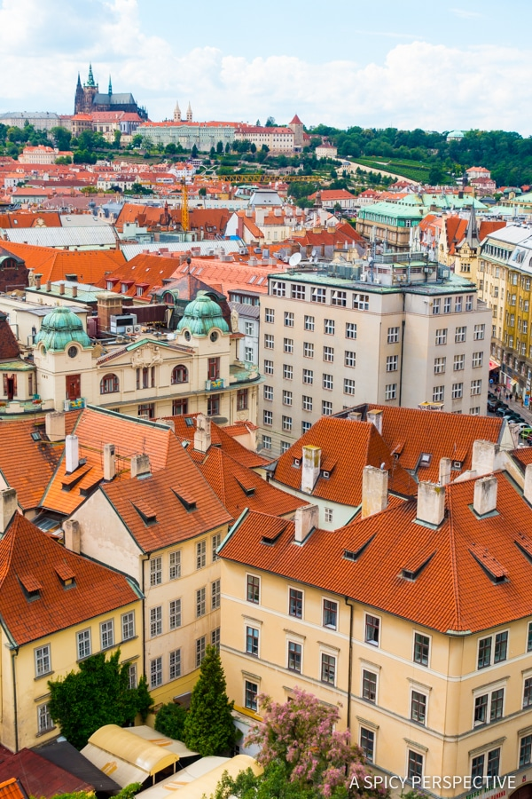 Library View - Top 10 Reasons to Visit Prague, Czech Republic | ASpicyPerspective.com #travel #europe