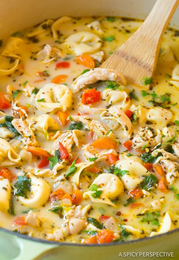 Light and Creamy Chicken Tortellini Soup Recipe. A cozy blend of chicken, vegetables, spice, cheese, and tortellini in a thin creamy broth. Lightened-up! #ASpicyPerspective #chicken #soup #healthy