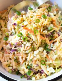 Buffalo Blue Cheese Coleslaw Recipe (Cole Slaw)