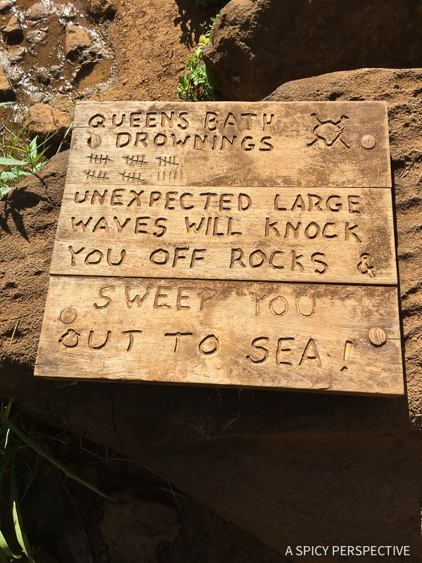 Hawaii Bucket List- Top Things To Do In Kauai