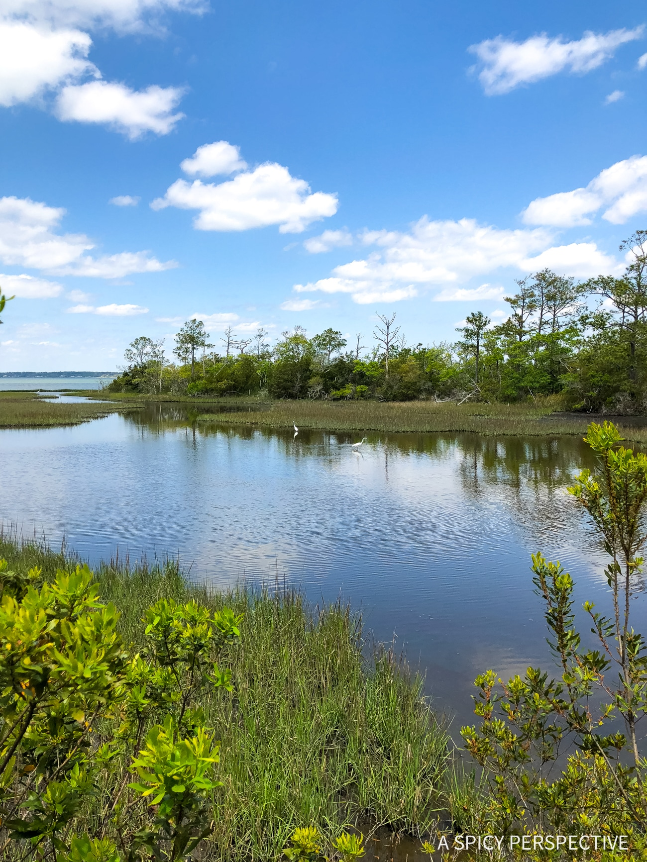 Instracostal Marshland - Why You Should Visit The Crystal Coast Outer Banks NC (Emerald Isle Vacation Travel Tips!)
