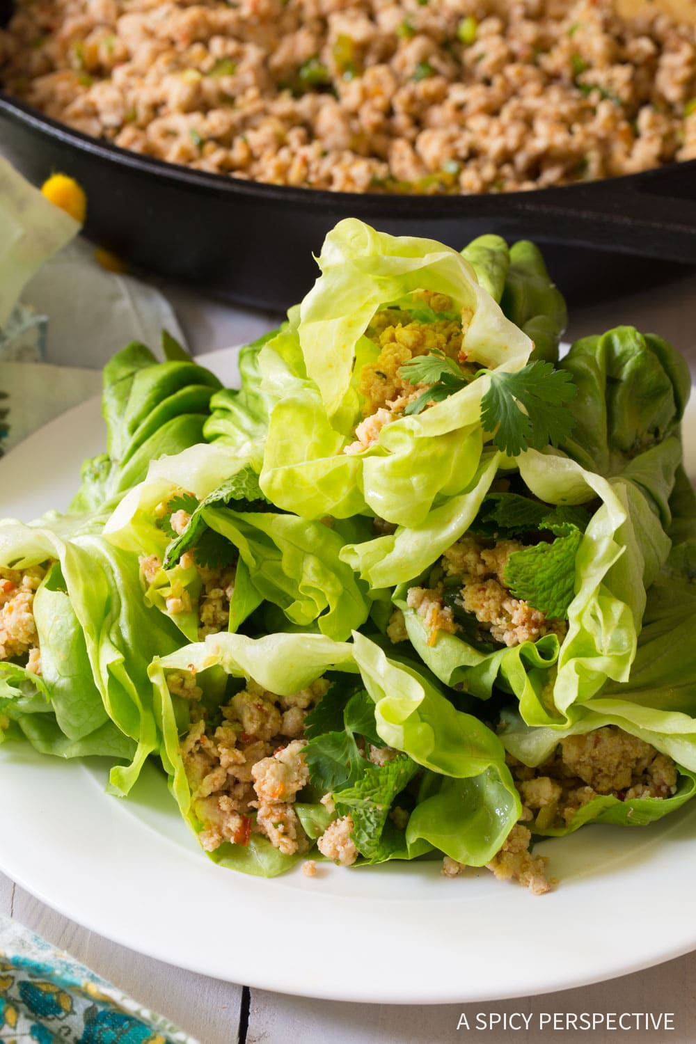 Zesty Keto Thai Larb Rolls Recipe #ASpicyPerspective #ketogenic #paleo
