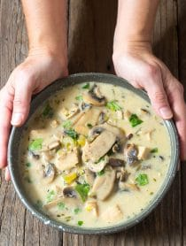 Low Carb Creamy Chicken Mushroom Soup Recipe #ASpicyPerspective #Keto