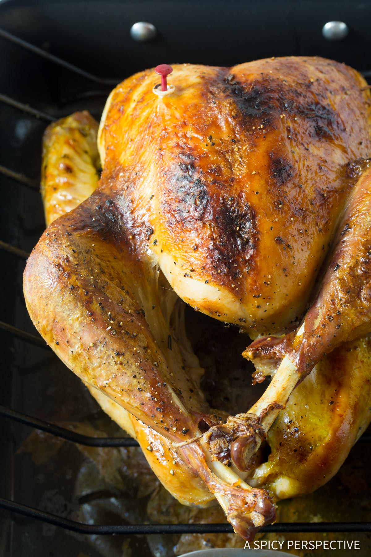 Best Turkey Brine Recipe #ASpicyPerspective