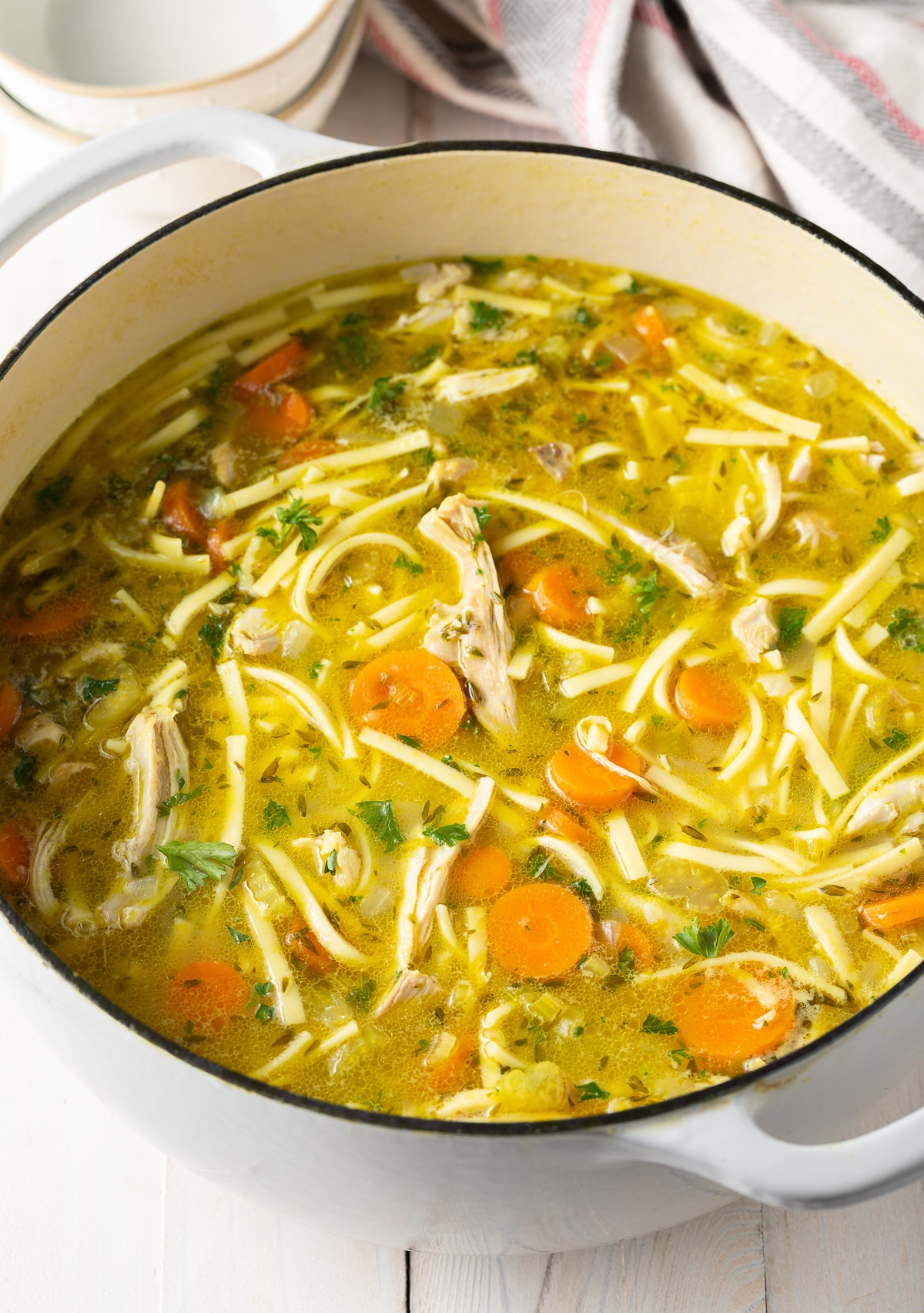Homemade Chicken Noodle Soup Recipe Video A Spicy Perspective