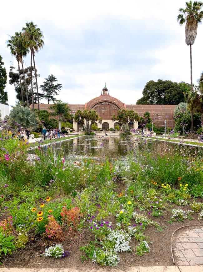 San Diego Balboa Park #ASpicyPerspective #travel #vacation #california