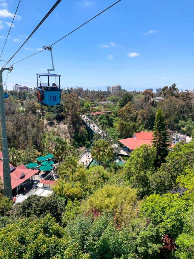 San Diego Tips #ASpicyPerspective #travel #vacation #california