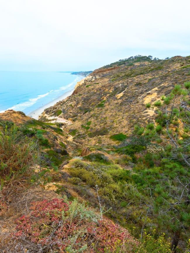 San Diego Travel Tips #ASpicyPerspective #travel #vacation #california