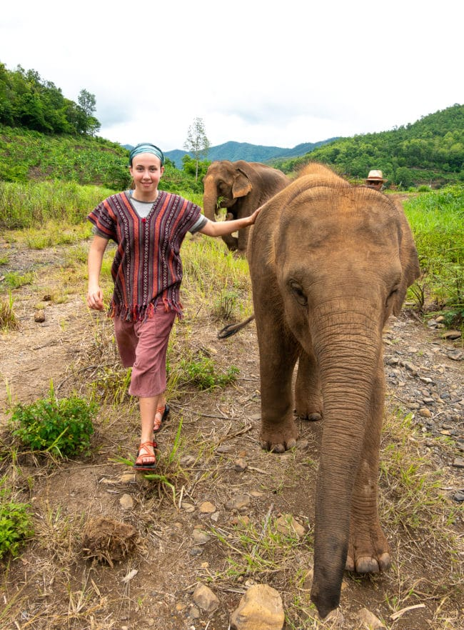 Thailand Elephant Camp - Travel Tips #ASpicyPerspective #vacation #thailand #asia #trip #travel
