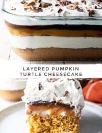 Layered Pumpkin Turtle Cheesecake Recipe: A soft fluffy pumpkin spice cake topped with creamy cheesecake, caramel, chocolate, and pecans!