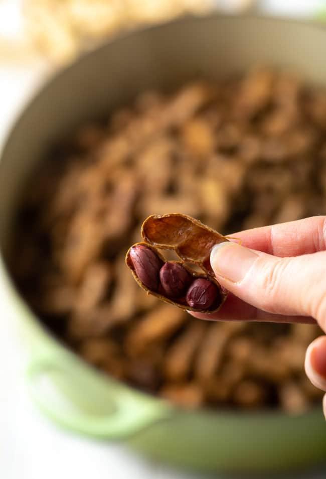 Easy Boiled Peanuts Recipe (3 Ways!) #ASpicyPerspective #instantpot #pressurecooker #stovetop #crockpot #slowcooker #southern #peanuts