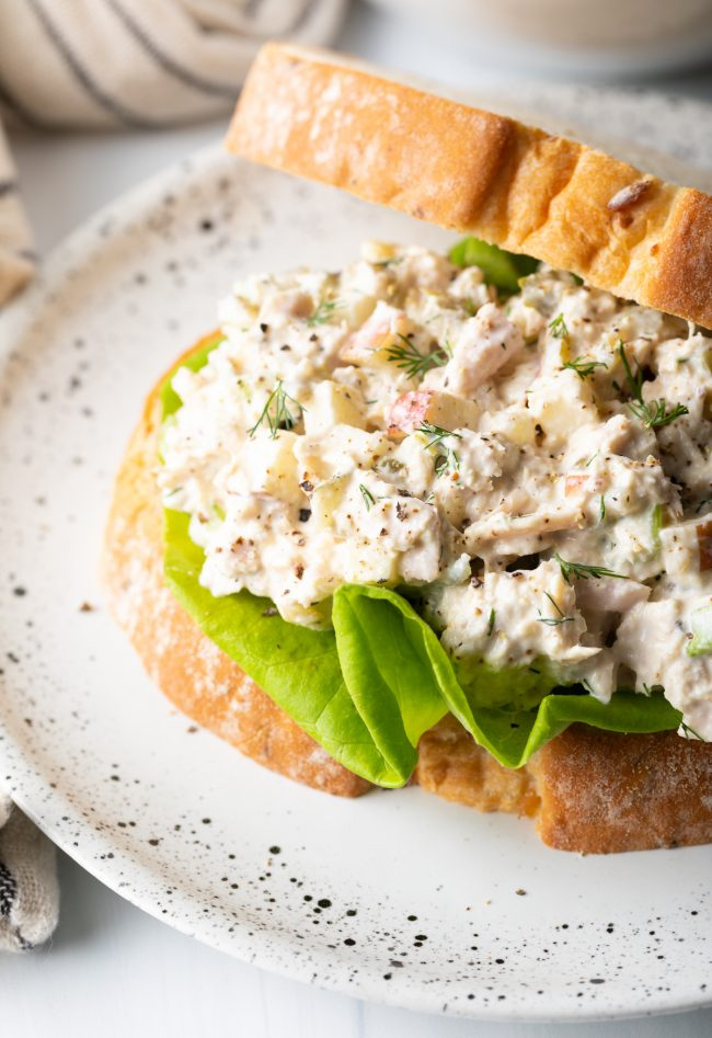 up close view of tuna sandwich with dill and apple
